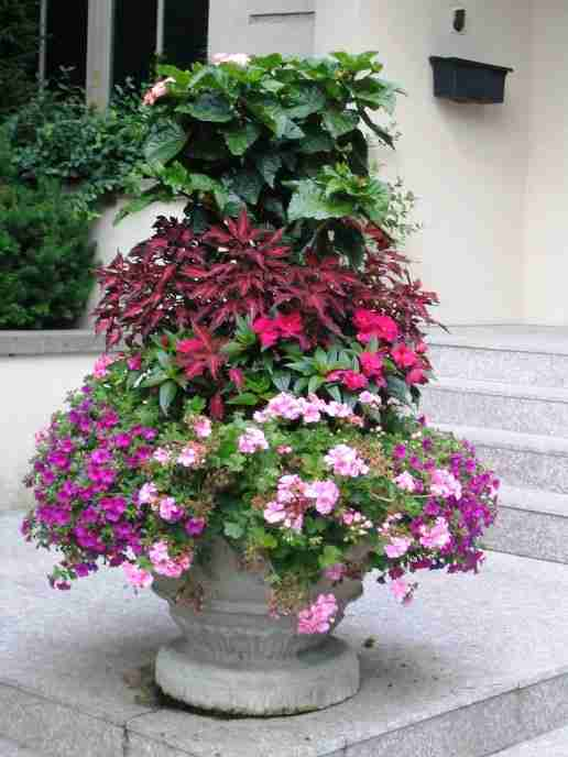 Summer Planter 2