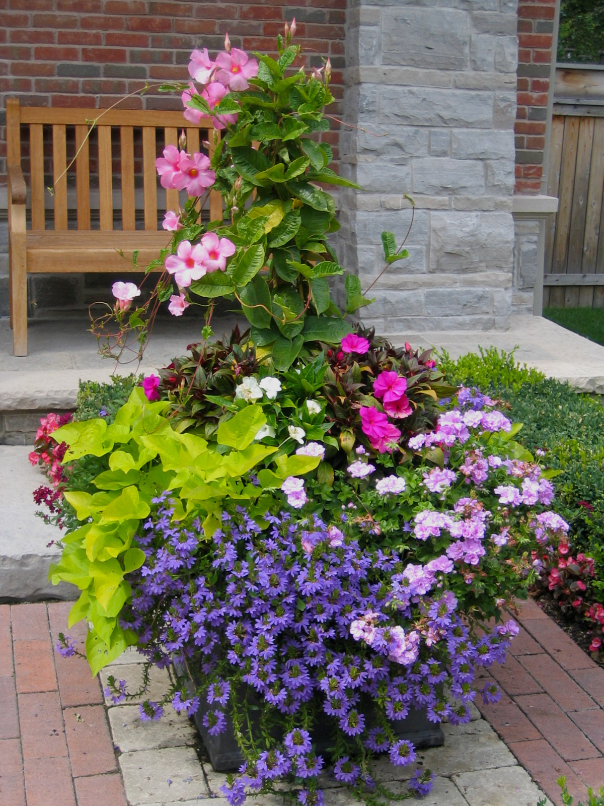 What to plant in seasonal urns for summer, fall, winter ...