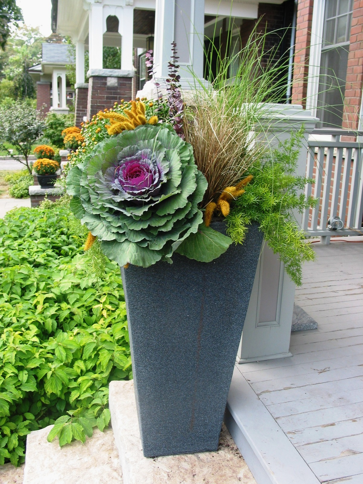 Outdoor halloween decorations 2014 - What To Plant In Seasonal Urns For Summer Fall Winter Amp Spring