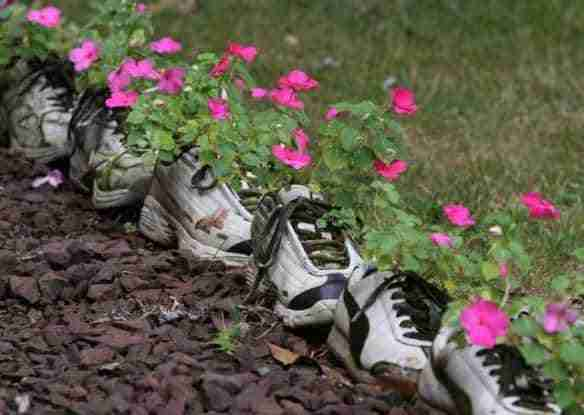 the-world_s-top-10-best-images-of-plants-in-shoes-2