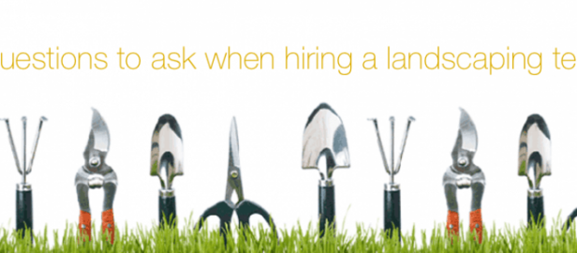 6 questions to ask landscaping team aden earthworks